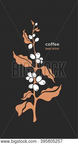 Vector Coffee Plant. Art Symbol. Golden Branch, Tropical Aroma Bean. Nature Illustration Isolated On
