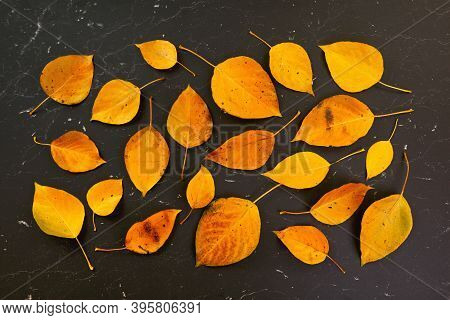 Orange Coloured Autumn Leaves On Black Marble Like Board, View From Above