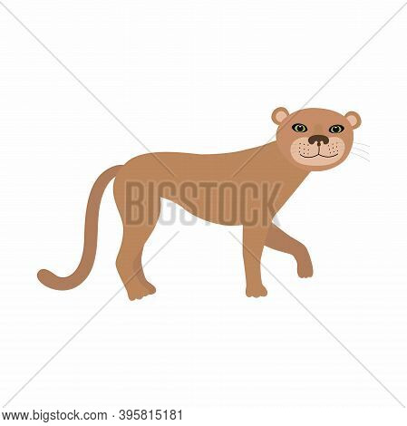 Puma Cougar Or Mountain Lion. Vector Illustration Isolated On White Background.