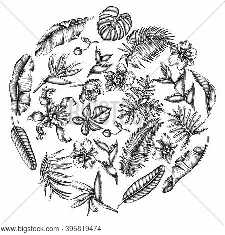Round Floral Design With Black And White Monstera, Banana Palm Leaves, Strelitzia, Heliconia, Tropic