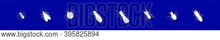 Set Of Termite Cartoon Icon Design Template With Various Models. Modern Vector Illustration Isolated