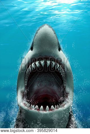 Great White Shark (carcharodon Carcharias) Attacking With Its Mouth Open And Large Teeth, Rising Fas