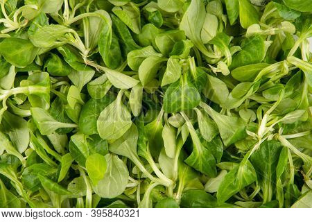 Lamb's Lettuce Texture - Top View And Closeup Of The Lamb's Lettuce Leaves