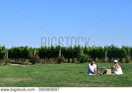 Stonington, Ct - Aug 1: Saltwater Farm Vineyard In Stonington, Connecticut, As Seen On Aug 1, 2020.