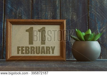 February 11th. Day 11 Of Month, Date In Frame Next To Succulent On Wooden Background Winter Month, D