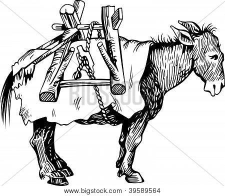 Sad transportation donkey standing on white background poster