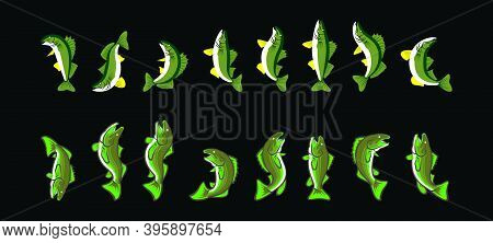Set Of Trout Fish Cartoon Icon Design Template With Various Models. Modern Vector Illustration Isola
