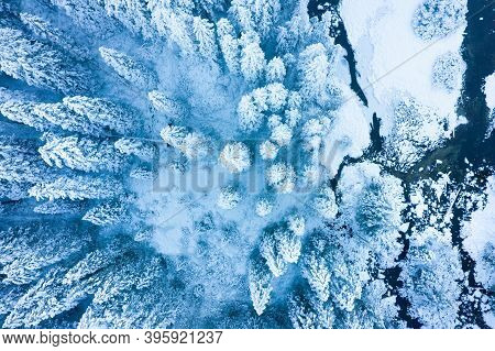 Winter Aerial View On The Snowy Forest And Icy River. Scenic Frosty Nature In Mountain Valley View F