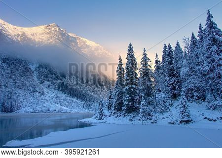 Snowy Pine Trees On The Frozen Mountain Lakeshore In The Morning Sunrise. Winter Ice Lake. Scenery W