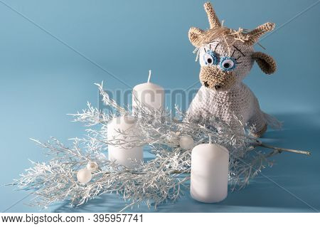 The White Knitted Bull Is A Symbol Of The New Year 2021. Goby Candles And White Christmas Twig On A