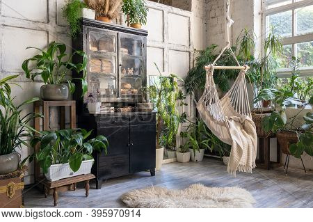 Cozy Rope Swing In Living Room With Green Houseplants In Flower Pot And Black Vintage Chest Of Drawe