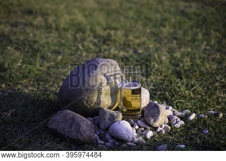 Mug Of Beer Among The Stones In A Green Garden.