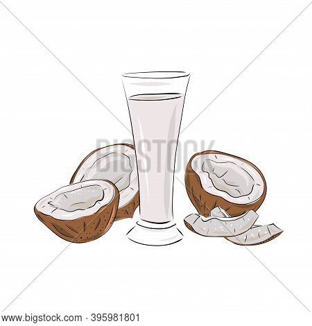 Hand Drawn Vector Illustration Of Glass With Coconut Water And Juice, Whole Pulp And Slices. Smoothi