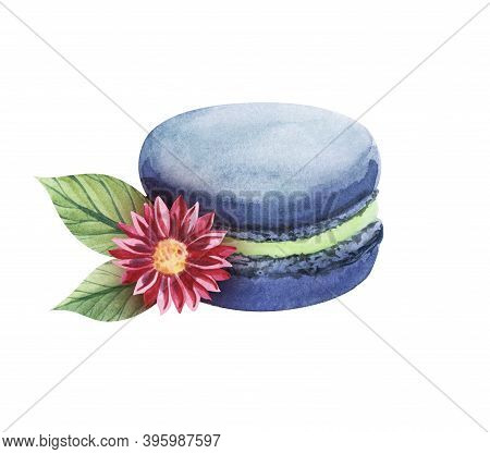 Watercolor Image Of Single Blue Macaroon With Green Cream Decorated With Beautiful Pink Daisy Isolat