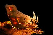 warthog skull lit by candles from inside against black background on a rock poster