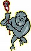 Illustration of a gorilla ape holding a lacrosse stick viewed from the front on isolated white background. poster