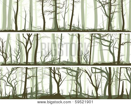 Horizontal Banners With Many Tree Trunks.