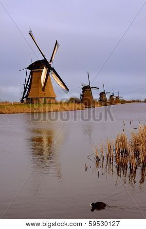 Kinderdijk Windmills In The Netherlands, Holland.