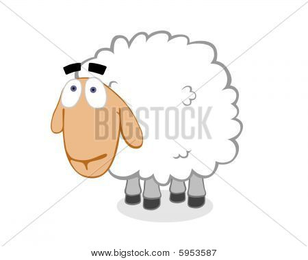 Innocent Sheep