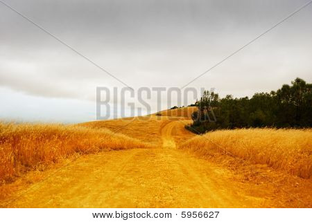 Rural Road With Stormy Sky