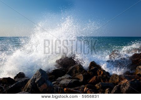 Sea Surf 1