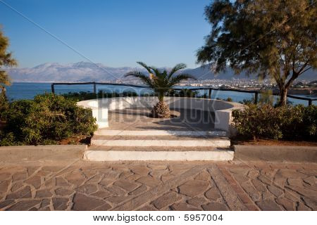 Viewing Platform With A Palm Tree