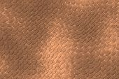 Reptile skin image of a nice skin background poster