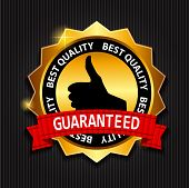 Best Quality Guaranteed Gold Label with Red Ribbon Vector Illustration poster