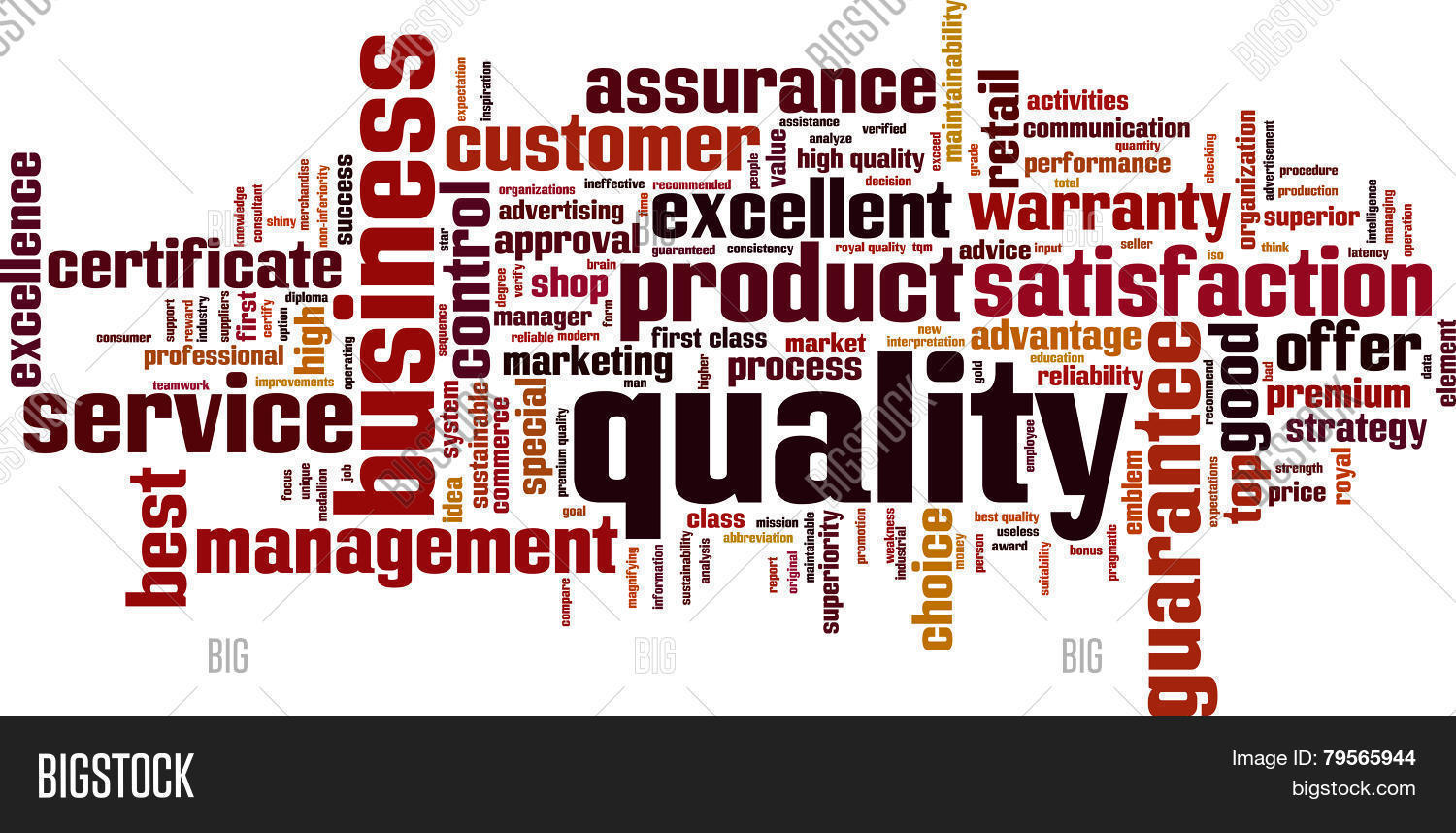 Quality Word Cloud Vector Photo Free Trial Bigstock
