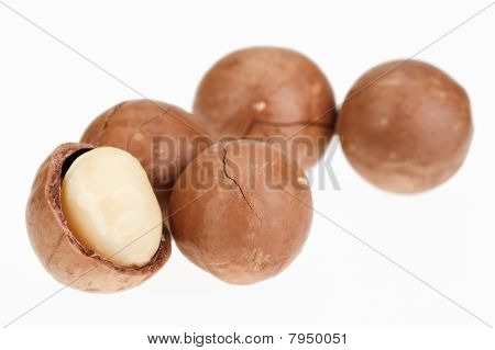 Shelled And Unshelled Macadamia Nuts Isolated On White