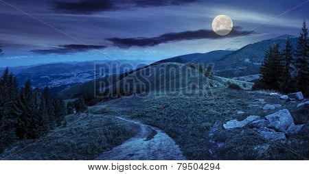 Pine Trees Near Valley In Mountain At Night