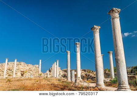 Ruins of ancient Salamis city. Famagusta district. Cyprus poster