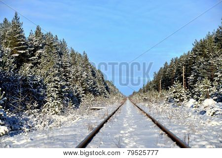 The railway in the winter woods.