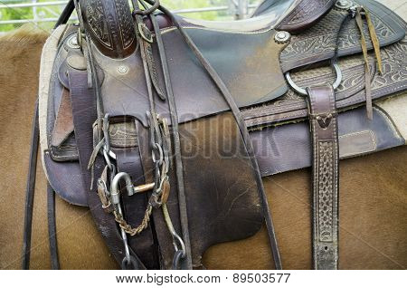 Saddle for horses, detail. Color image
