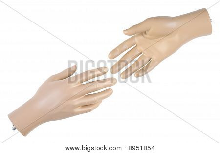 Male Mannequin Hand | Isolated