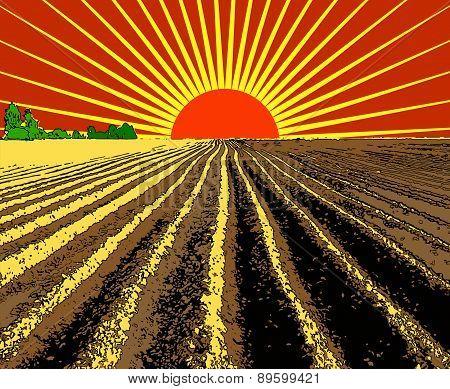 Vector Illustration Red Sun