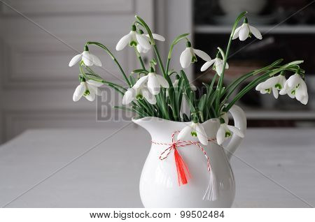 Snowdrops Close-up And Spring Red White Symbol