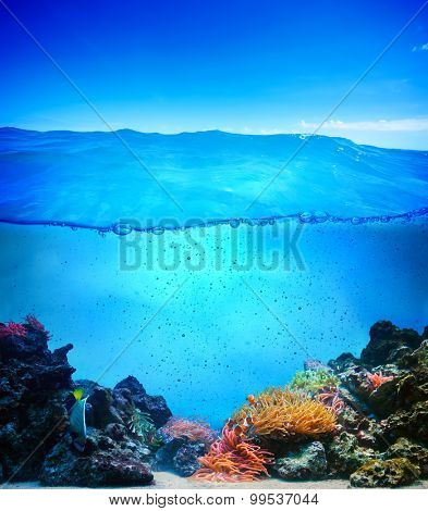 Coral reef underwater background ready for design. Clean and clear pure waterline with small drops flowing.