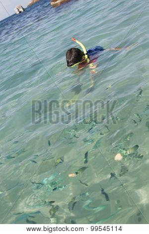 Asian boy snorkelling and looking at fish