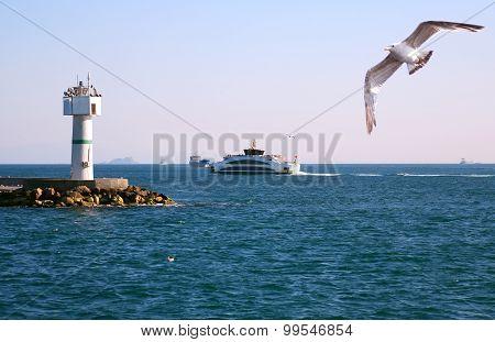 Lighthouse In Bosporus