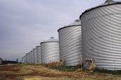 rows of grain storage bins showing perspective poster