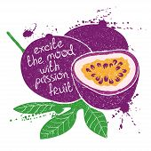 Hand drawn illustration of isolated purple passion fruit silhouette on a white background. Typography poster with creative slogan. poster