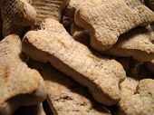 detail close-up of dog cookies piled high. poster