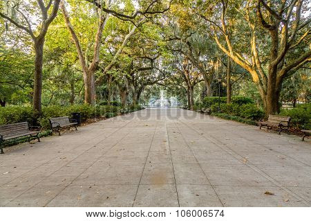Forsyth Park In Early Morning Light