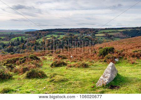 Autumn Moorland