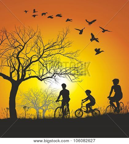 Family cycling in the countryside at sunset