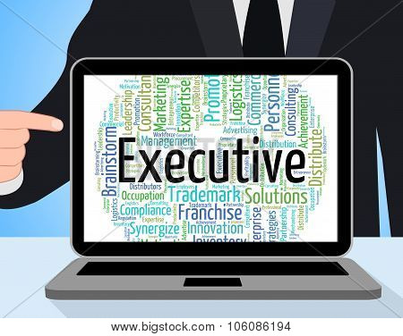 Executive Word Represents Senior Administrator And Chairwoman
