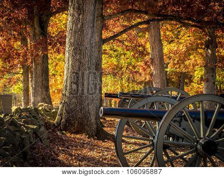 Row of Cannons in Fall Setting