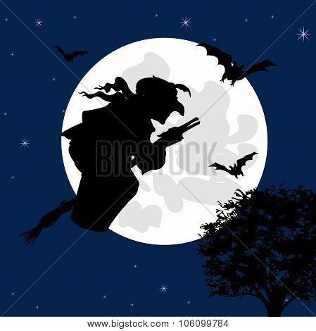 Sorceress Flies On Broom