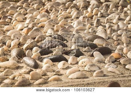 Mini Stone With Sunlight Bury On Sand For Decorate In The Garden, Warm Tone